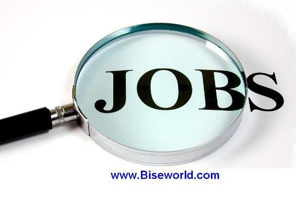 online jobs driver operator 2013
