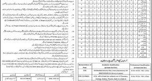 Online Lahore Teachers Jobs2014