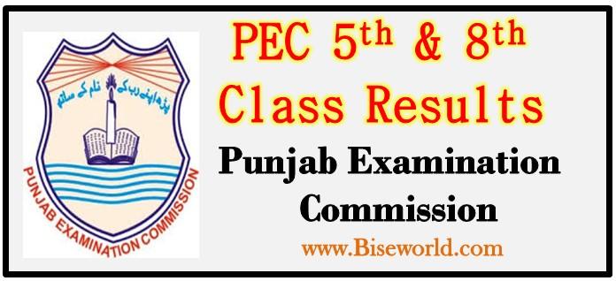 Sahiwal 5th 8th Class Result 2018