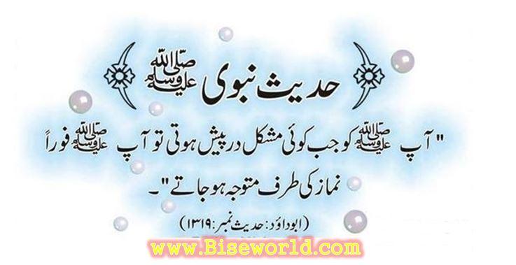 Prophet Muhammad SAW Hadess Nabvi