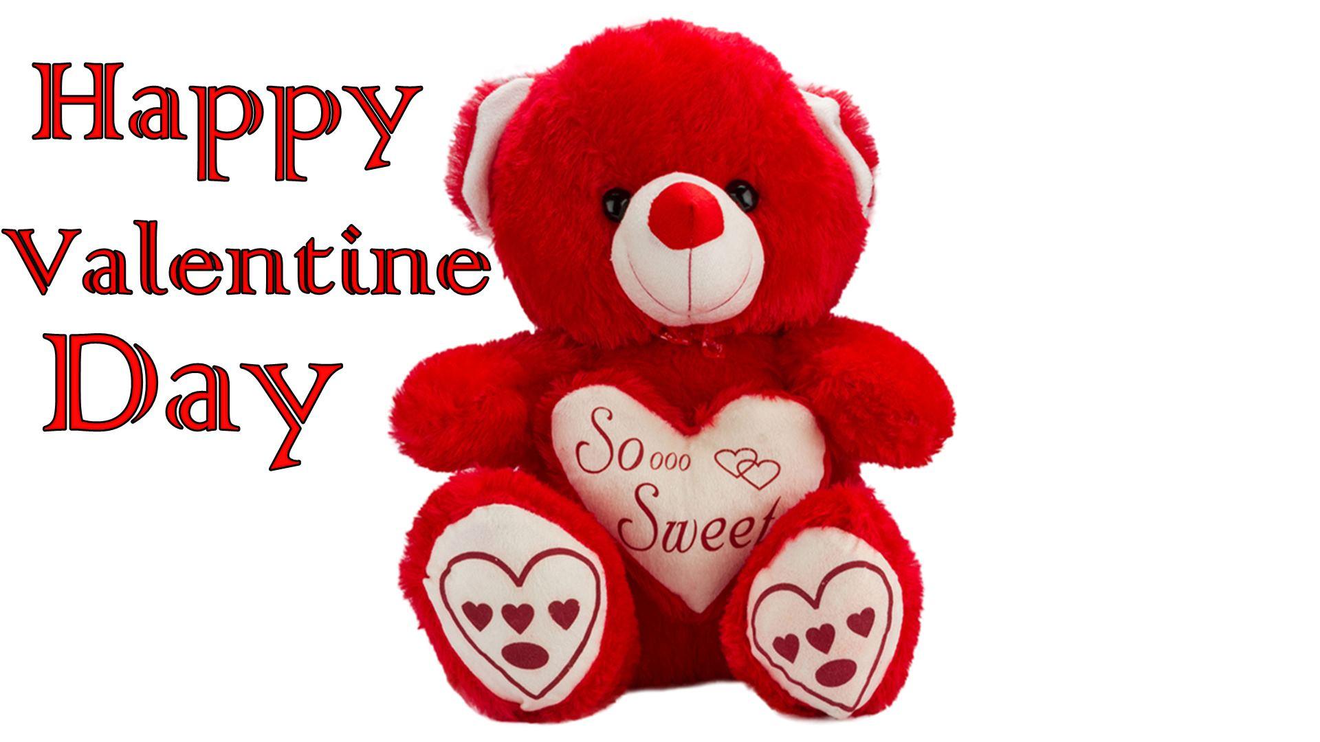 Teddy Bear Fiancee Wishing Valentine 2016 Images