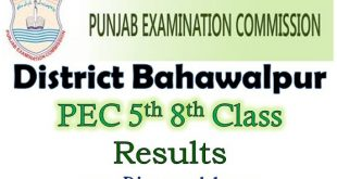 District Bahawalpur 5th 8th Class Result 2021