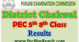 PEC 5th 8th Class Result 202 Chakwal