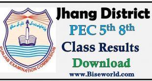PEC Five Eight Class Result 2020 Jhang