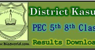 PEC Five Eight Class Result 2020 Kasur