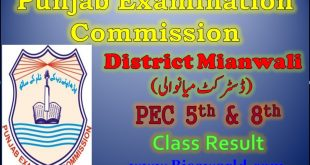 PEC Five Eight Class Result 2021 Mianwali