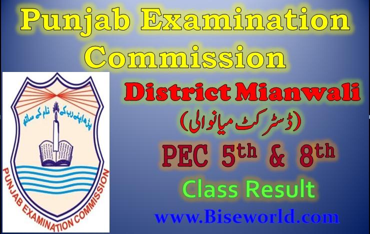 PEC Five Eight Class Result 2017 Mianwali