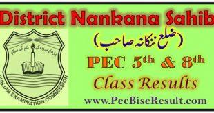 PEC 5th 8th Class Result 2021 Nankana Sahib