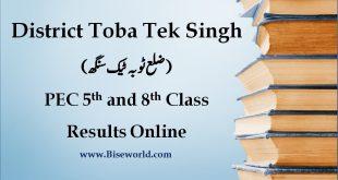 Toba Tek Singh PEC 5th & 8th Class Result 2020
