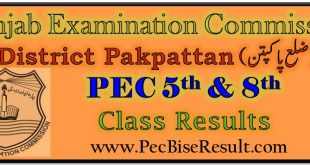 Pakpattan 5th & 8th Class Result 2020