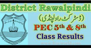 PEC 5th and 8th Class Result 2021 Rawalpindi