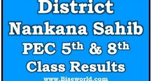PEC 5th 8th Class Result 2020 Nankana Sahib