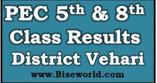 District Vehari 5th 8th Class Result 2021