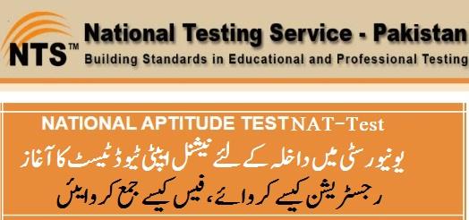 National Aptitude Test NAT 2021 National Testing Service